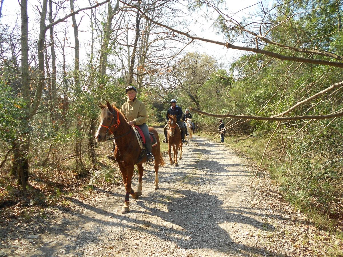 DSCN a cavallo