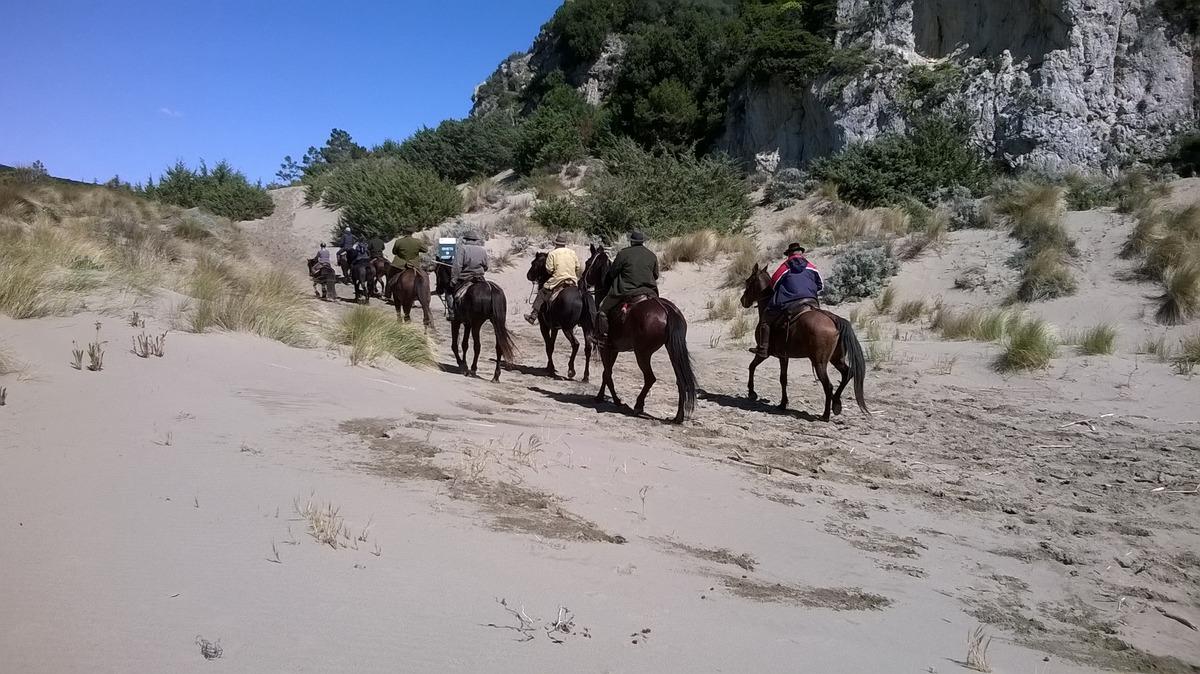 WP   a cavallo