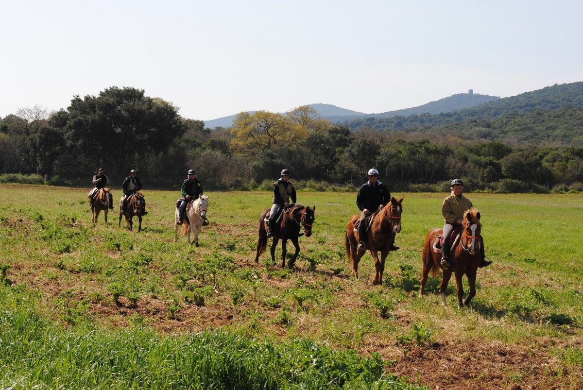 raduno equestre  a cavallo